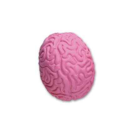 Main Product Image for Brain Pencil Top Eraser