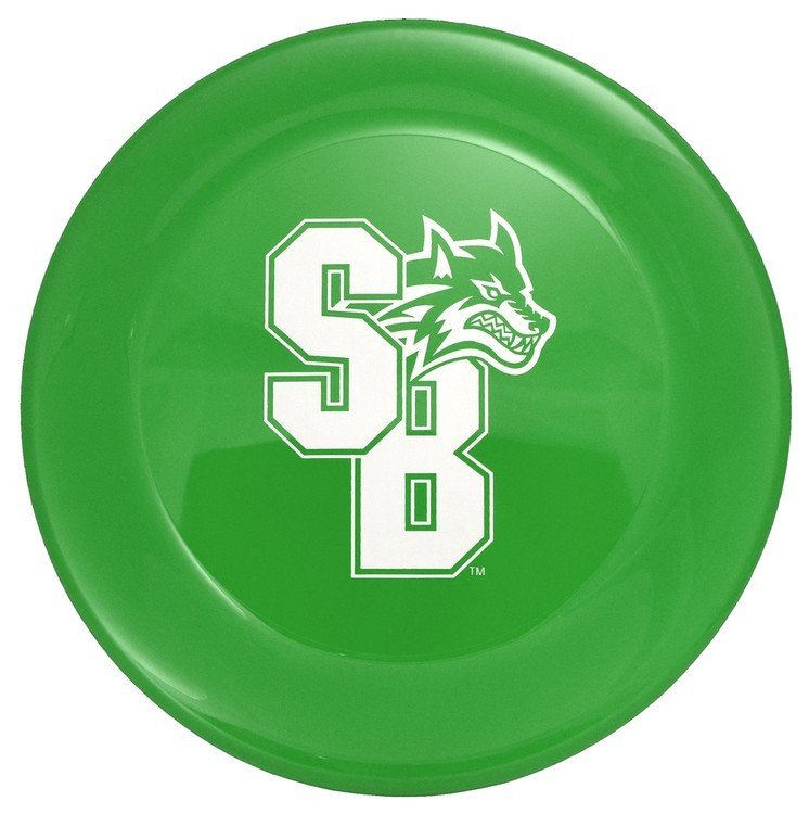 "Main Product Image for Custom Frisbees (9"" Dia.)"