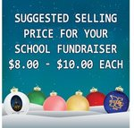 Round Fundraiser Shatterproof Ornaments -