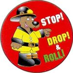 Buy Stop, Drop and Roll Sticker Rolls