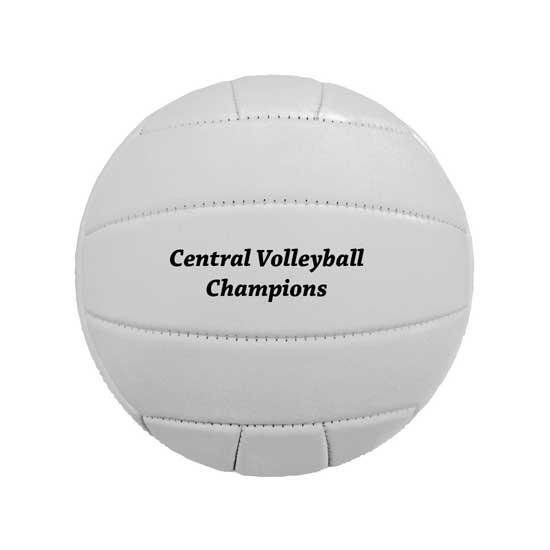 Main Product Image for Synthetic Leather Mini Volleyball - Custom Printed