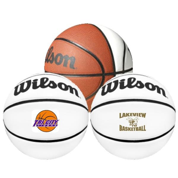 Main Product Image for Wilson Autograph Basketball - Full Size